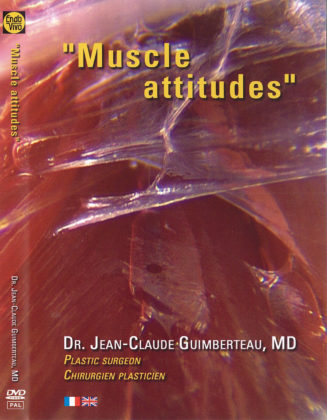 Muscle attitudes