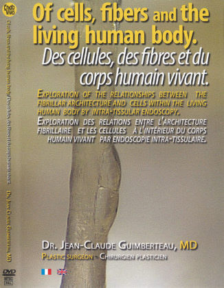 Of cells fibers and the living human body